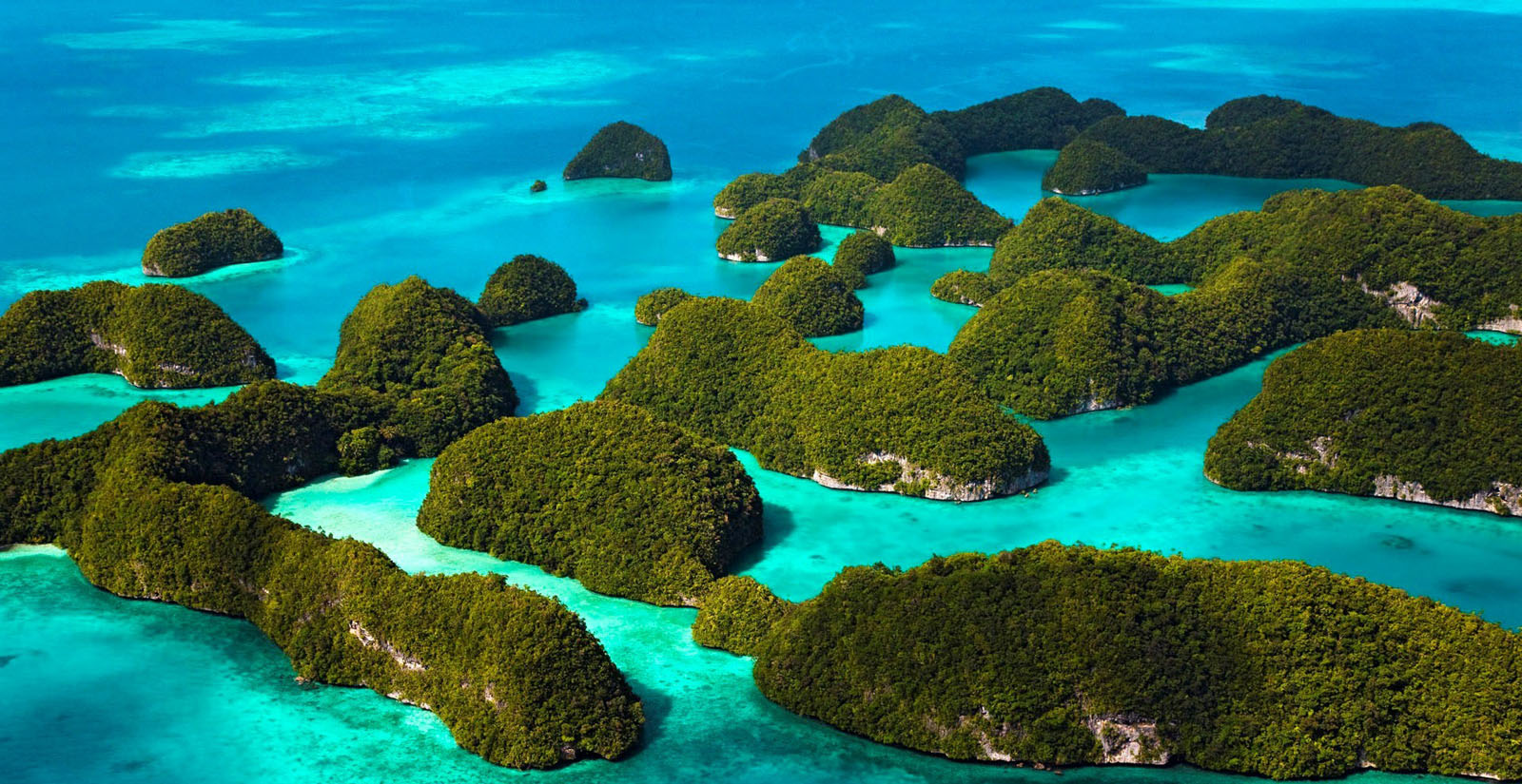 raja ampat developments