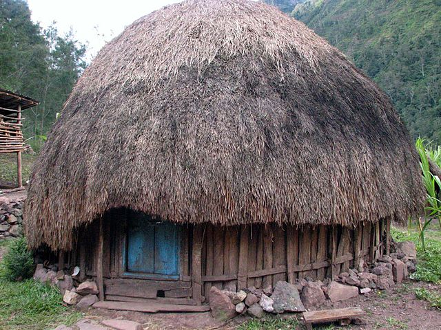 The Uniqueness of Papuan Traditional Houses Honai and Milliepede
