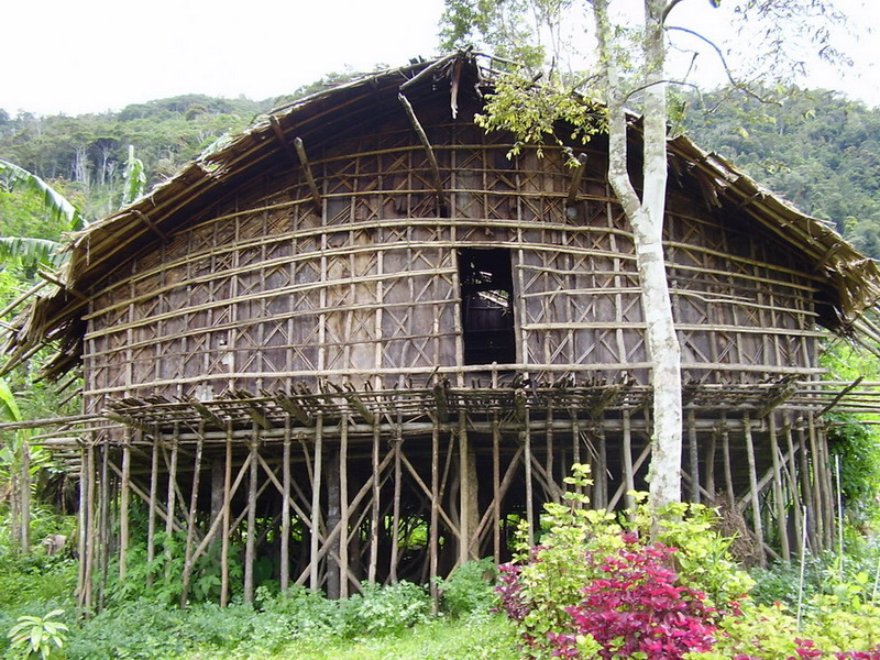 The Uniqueness of Papuan Traditional Houses