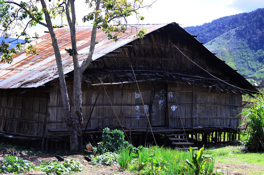 The Uniqueness of Papuan Traditional House